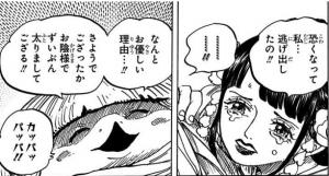日和と河松 -ワンピース最新考察研究室.952