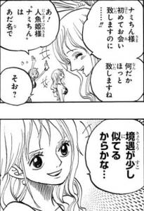 しらほし姫とナミは「境遇が少し似てる」 -ワンピース最新考察研究室.627