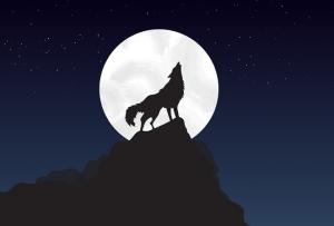 狼と月 -ワンピース最新考察研究室