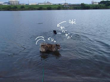 水男たち4