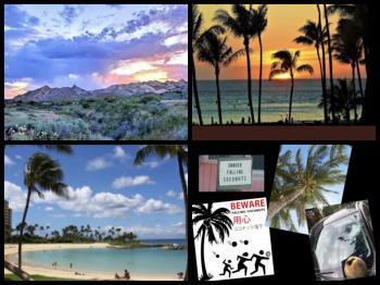 Collage_Fotor55pop_convert_20210604161550.jpg