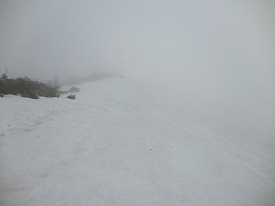 ④濃霧の平標南面