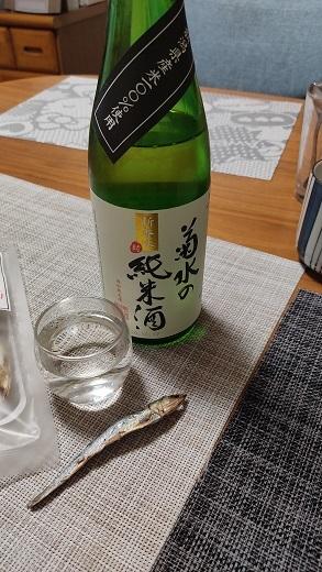 菊水純米酒20200123
