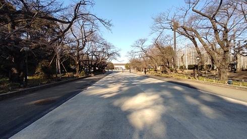 上野公園20210219