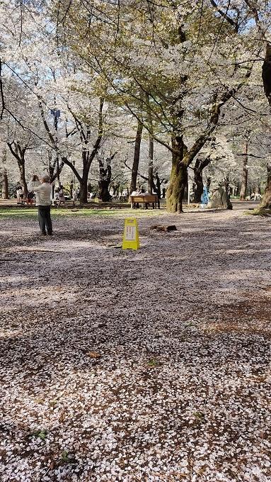 大宮公園20210329