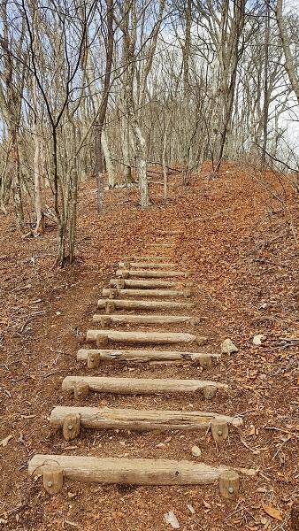 山頂への登り20210401