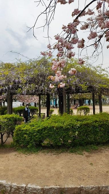 上落合公園20210408