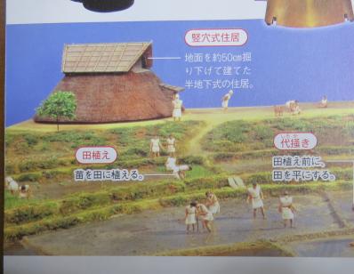 「大迫力!写真と絵でわかる日本史」弥生時代の田植え