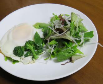 ビニールハウスの野菜でサラダ