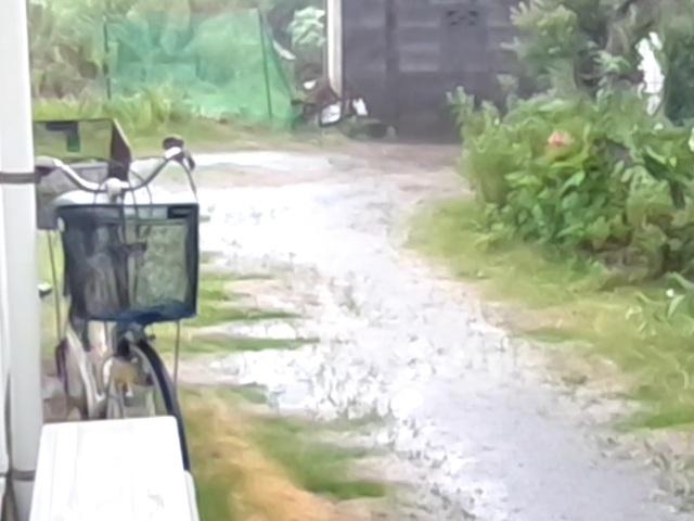庭に水路が-1