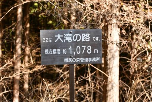 20201204・三頭山2-13・中