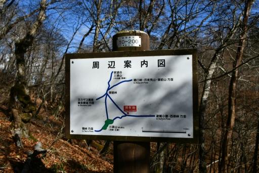 20201204・三頭山4-21・中
