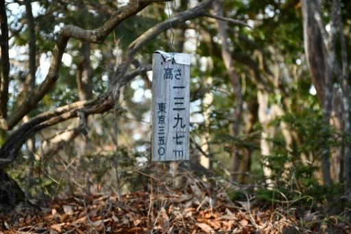 20201204・三頭山6-21・中