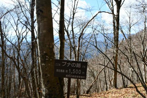 20201204・三頭山空14・標高1500メートルの空