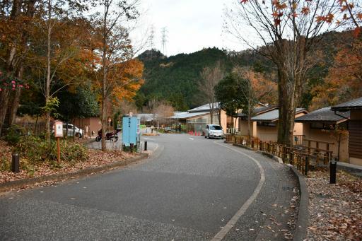 20201204・三頭山8-03