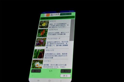 20210116・植物アプリ6
