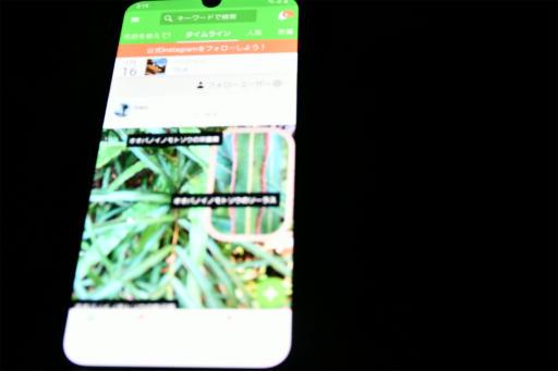 20210116・植物アプリ2