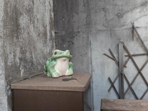 20210208・・坂之下謎の1・蛙・中