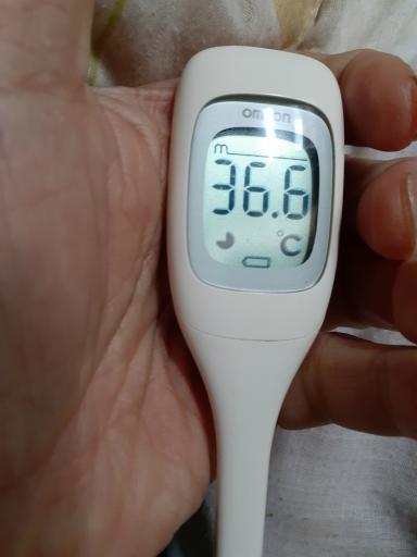 20210217~18・風邪2・中
