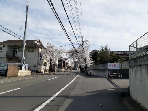 20210329・桜の空6・中