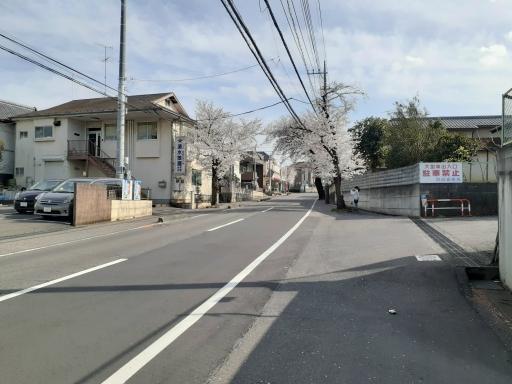 20210329・桜の空5・中