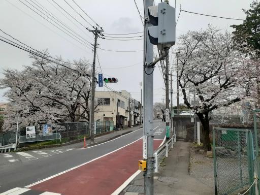 20210325・桜の空3・中