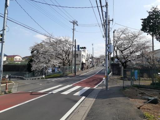 20210323・桜の空2・中