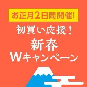 11_20210101001015e9a.jpg