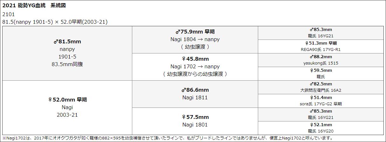 能勢YG2101系統図