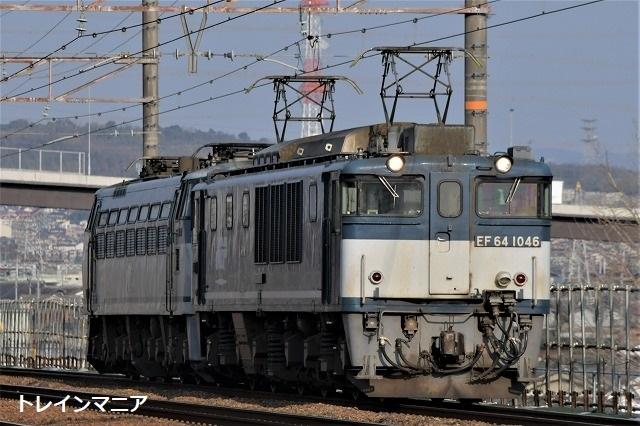 DSC_1139.jpg