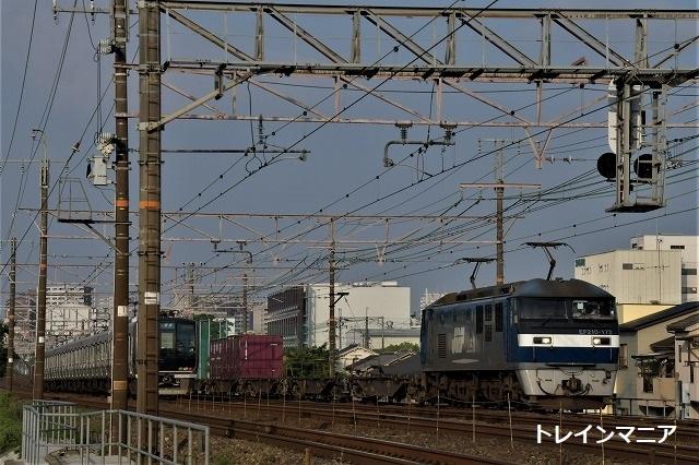 DSC_1348.jpg