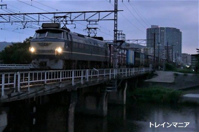 DSC_1388.jpg
