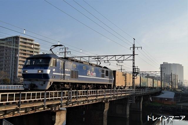 DSC_4960.jpg