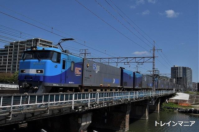 DSC_6566.jpg