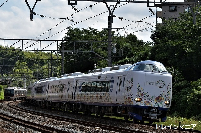 DSC_7031.jpg
