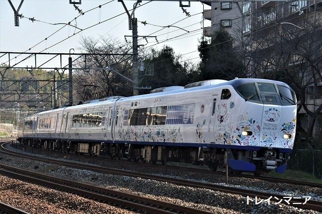 DSC_7143.jpg