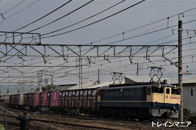 DSC_7356.jpg
