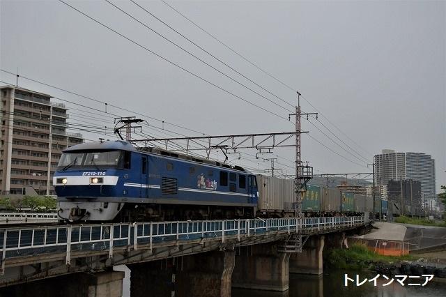 DSC_8395.jpg