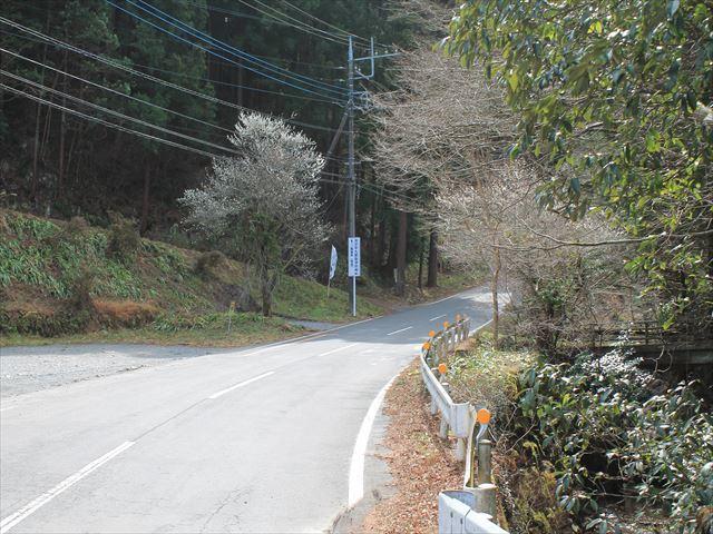 平九郎IMG_0323