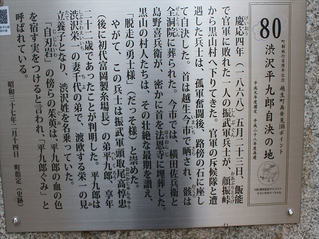 平九郎IMG_0330