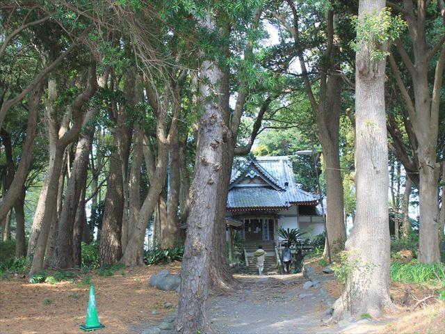 戸田IMG_0382