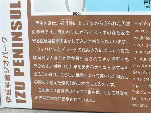 戸田IMG_0393