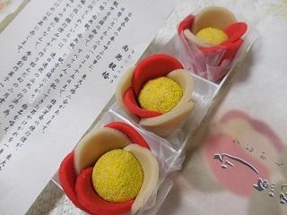 namukantsubaki1.jpg