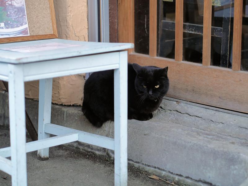 引き戸の前の黒猫1