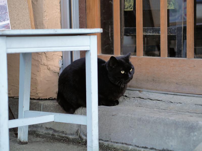 引き戸の前の黒猫2