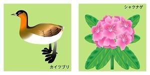 滋賀県の鳥と花