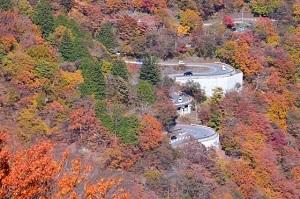 栃木県の有名なもの10