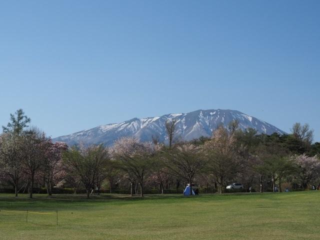 iwate-image.jpg
