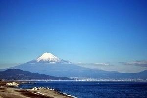 静岡県の有名なもの2
