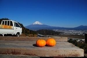 静岡県の有名なもの5